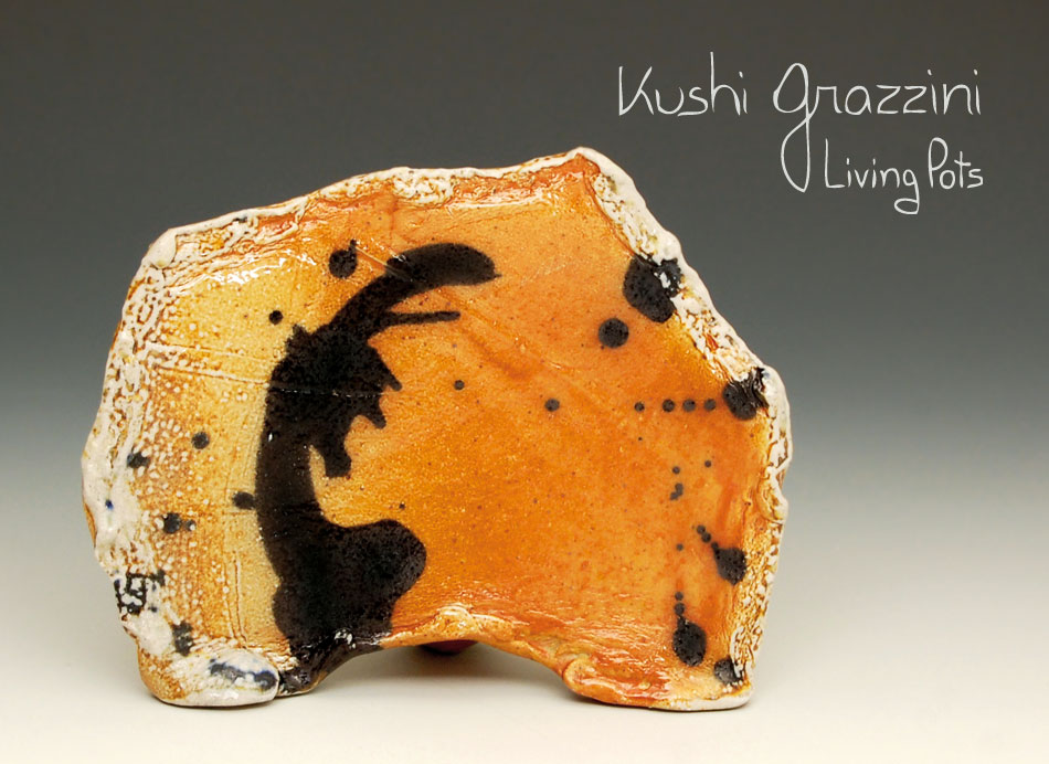 Kushi Grazzini - Living Pots - Ceramic Art